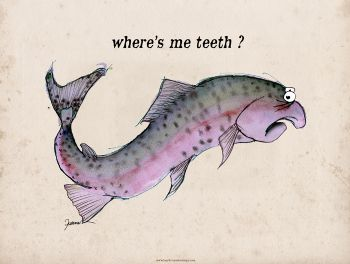 where's me teeth? - signed print